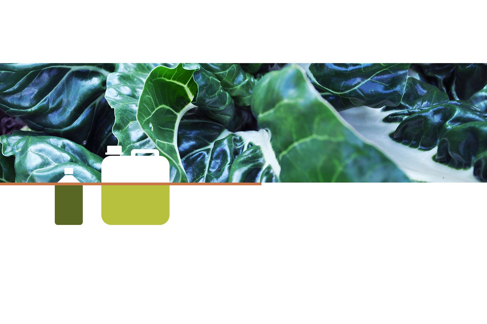 Titelbild_Garten_Landwirtschaft_Bioduenger_Eussenheimer_Manufaktur